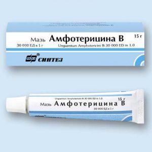 амфотерицин